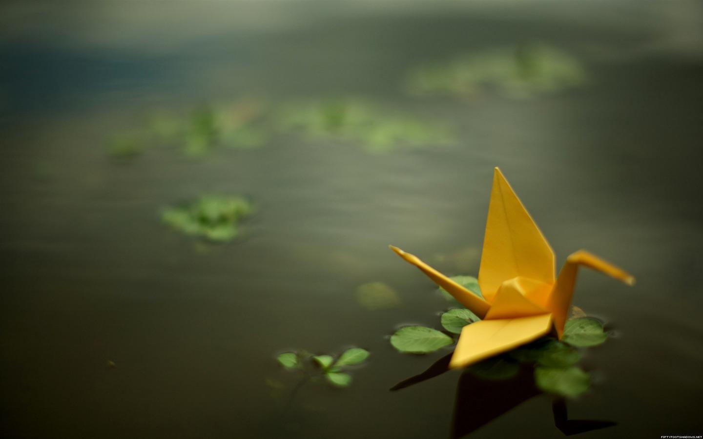 Yellow_paper_cranes-Life_photography_HD_wallpaper_1440x900