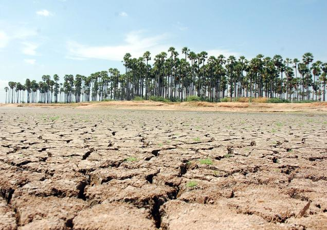 DROUGHT-STANDAL_9507f